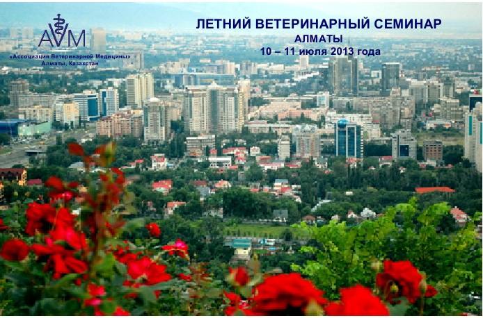 summer seminar